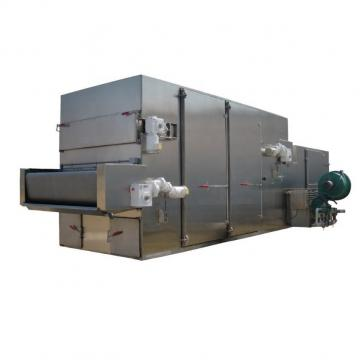 Industrial Food Drying Equipment Continuous Mesh Belt Seafood Air Dryer