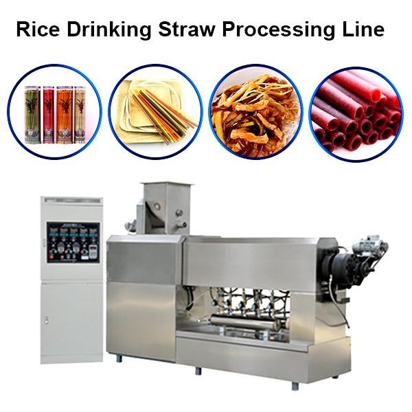 304 Stainless Steel Eco Friendly Edible Rice Drinking Straws / Pasta / Rice Straws ... #1 image