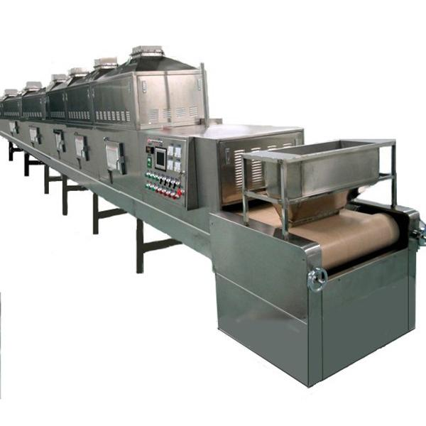 Fully Automatic Industrial Tunnel Microwave Oven #1 image