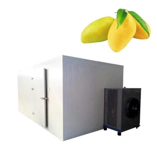 Stainless Steel Box Type Drying Machine Industrial Food Dehydrator Machine #1 image