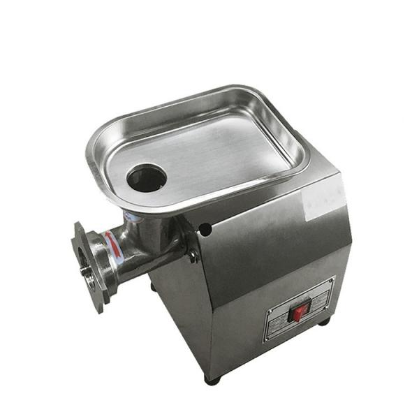 Stainless Steel Electric Indian Commercial Best Meat Grinder #1 image