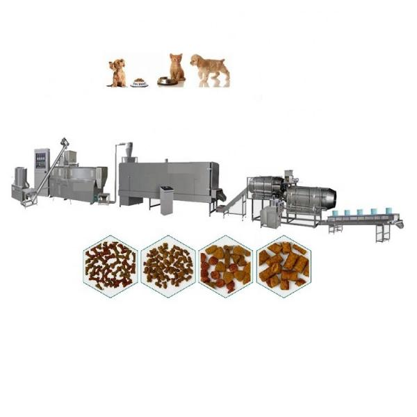 Dry Animal Aquarium Floating Fish Feed Pellet Making Extruder Pet Dog Catfish Food Processing Machine #1 image