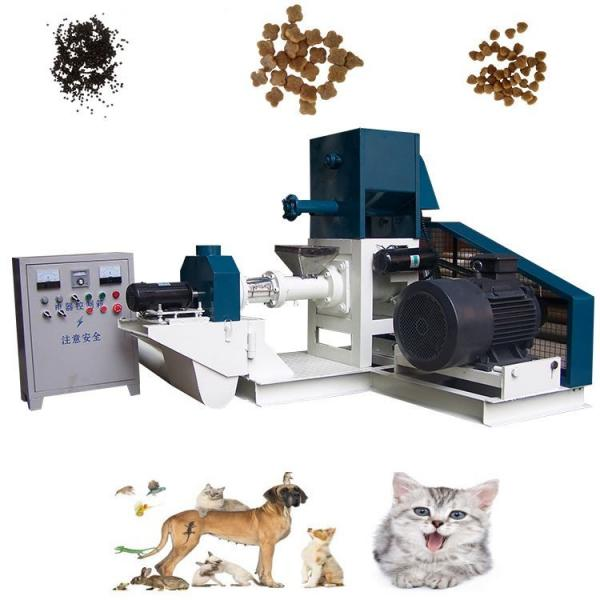 Animal Pet Pellet Making Processing Extruder Machine Dog Dry Food Production Line Dog Pet Food Processing Machinery Line #1 image