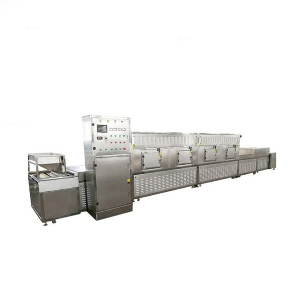 Low Temperature Industrial Electric Vacuum Microwave Tray Oven Dryer #1 image